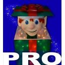 AD-ANI-Elf In a Box-PRO